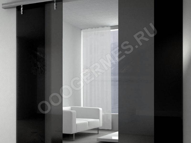 Стеклянные двери, тонированные черной пленкой