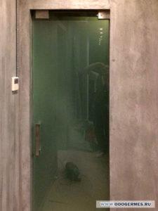 Цельностеклянная узкая дверь для санузла