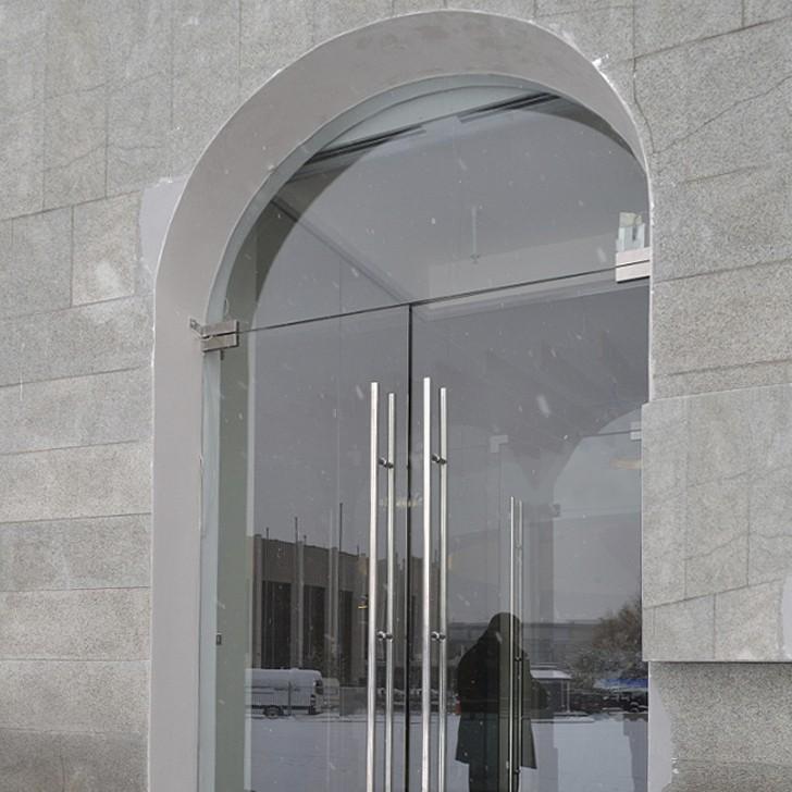 Стеклянная Входная арочная маятниковая дверь