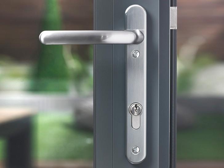 Стеклянная дверь в алюминии с нажимной ручкой