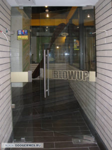 Маятниковая дверь с боковым экраном