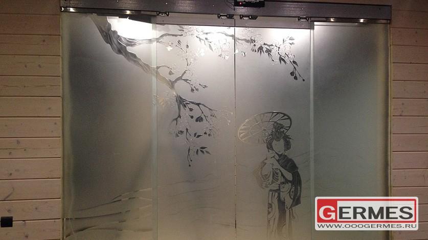Автоматическая стеклянная дверь с экранами