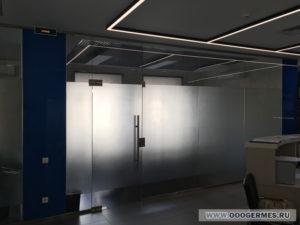 Перегородка из стекла и маятниковая дверь