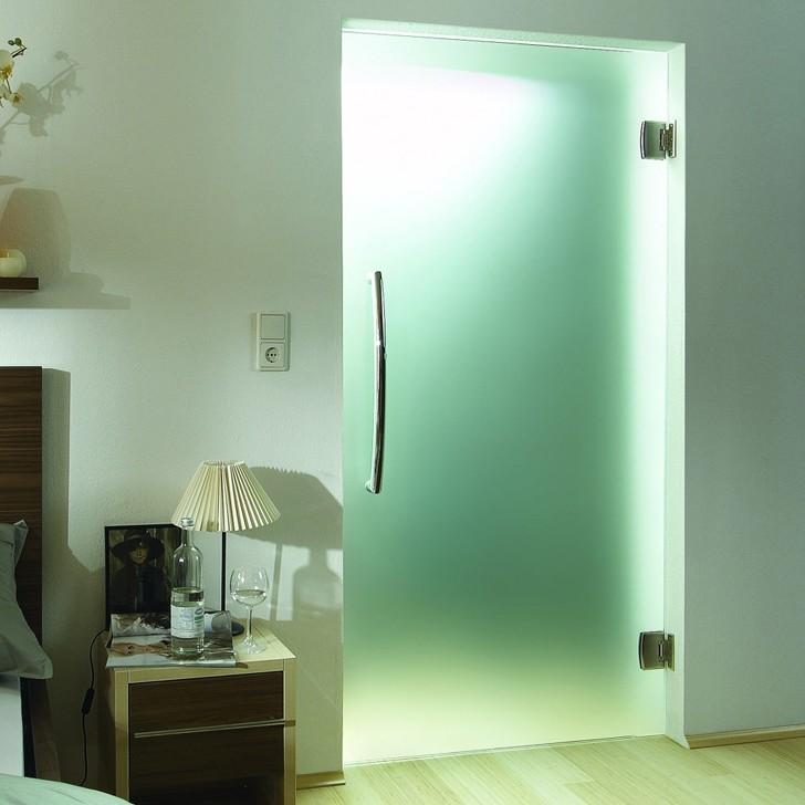 Одностворчатая стеклянная маятниковая дверь на петлях Double Action