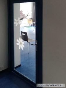 Стеклянная дверь в алюминиевом профиле